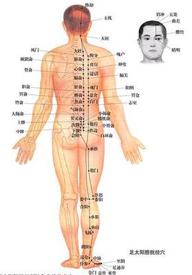 中医人体经络穴位治病图