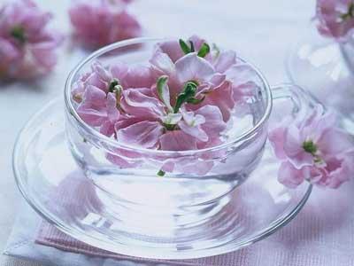 女人喝哪些茶可以美容养颜?