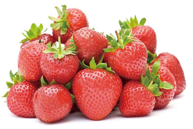草莓的生长周期会明显减短