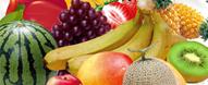 食物健康密码