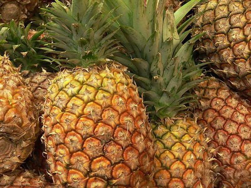哪些人不能吃菠萝 过敏体质者忌食