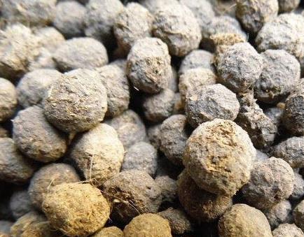 活砂造型步骤