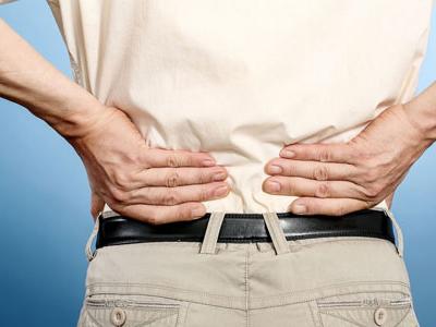 腰疼结构图