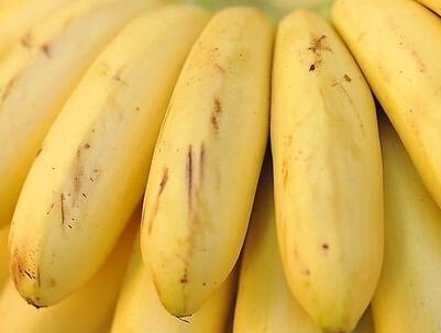 经期能吃香蕉吗 揭秘香蕉的神奇功效