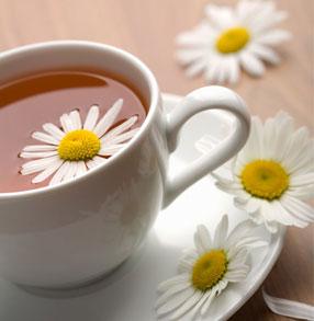 夏天常喝6款茶可降火消暑