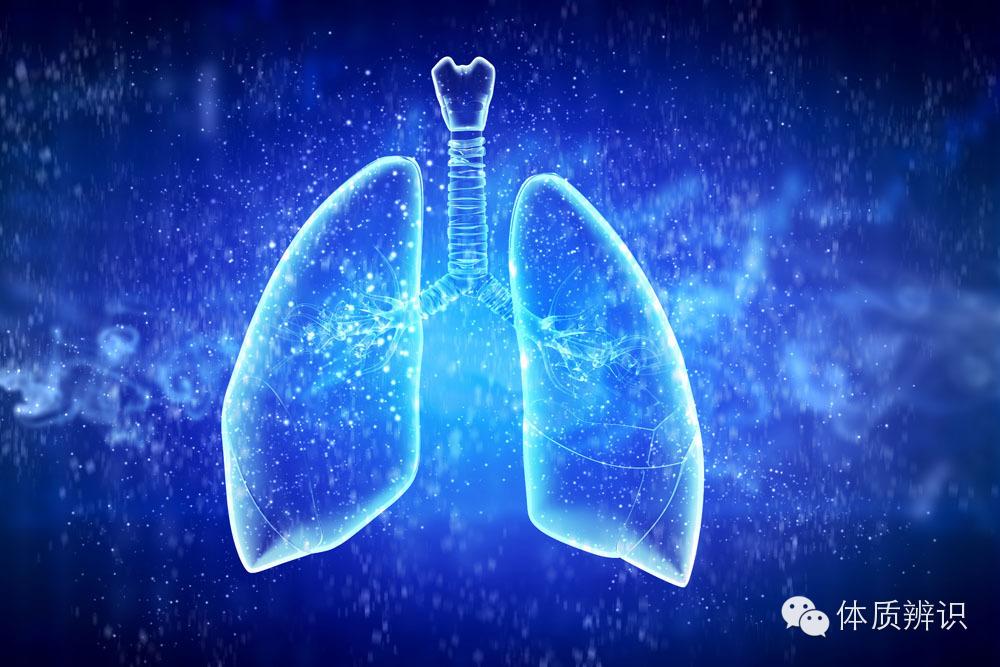 """【健康】多地雾霾压城  肺里的雾霾能""""吸""""出来?"""