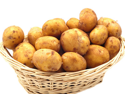 土豆结构图片大全