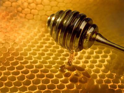 蜂蜜箱内部结构图