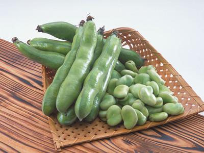 蚕豆简笔画 蔬菜