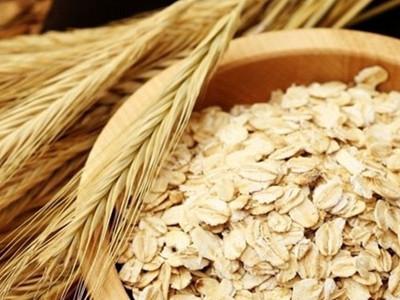 燕麦施用有机肥的技术