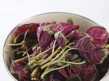 苋菜(紫)