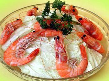 虾的身体结构解剖图