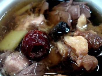 猪肾内部结构图