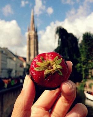 秋季保健养生要吃些什么